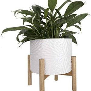 Ceramic Plant Pot with Wood Stand - 8 Inch White Cylinder Floral Pattern Embossed Flower Pot Indoor with Wooden Planter Holder