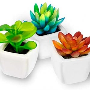 Fake Plants - Set of 3 Succulents Plants Artificial in Small White Mini Ceramic Planters - Potted Decor Plants for Home, Office, Bathroom, Bedroom, Desk, Bookshelf - Realistic Faux Plastic Greenery