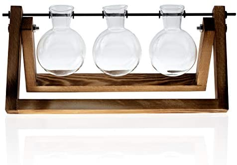 Mozing Bulb Vase, Desktop Clear Glass Planter Bulb Vase with Solid Wooden Stand and Metal Swivel Holder for Hydroponics Plants Home Garden Wedding Decoration(No Included Plants)