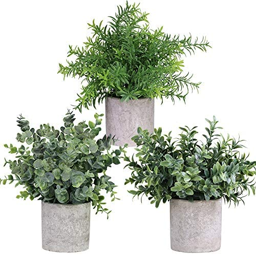 """Winlyn Mini Potted Plants Artificial Eucalyptus Boxwood Rosemary Greenery in Pots Faux Potted Herbs Small Houseplants 8.3""""-9"""" Tall for Indoor Greenery Tabletop Décor Centerpiece 3 Pack"""