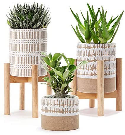 """Very cute Set of 3 small stoneware pots with two plant stands - two pots are 5.75"""" high and 4.5"""" wide and the smallest is 3.5"""" high x 4"""" wide. The pots do not have drainage holes. Plants not included."""