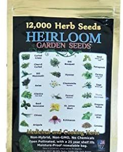 Heirloom Medicinal and Cooking Herb Seeds 22 Varieties - Non-Hybrid and No Chemicals and Non-GMO Survival Garden Seed Bank
