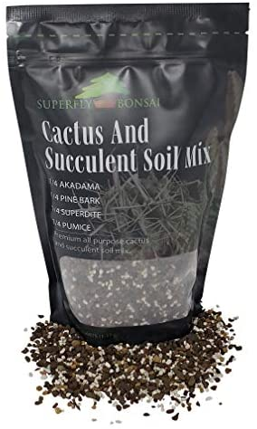 Succulent & Cactus Soil Mix - Premium Pre-Mixed Fast Draining Blend (1.25 Dry Quarts)