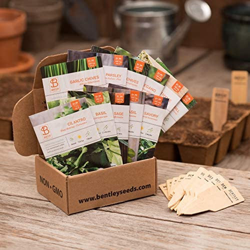 Seed Starter Kit – Culinary Herbs   Non-GMO   Heirloom Seed Packets   Natural Wood Row Markers   Sustainable Healthy Living