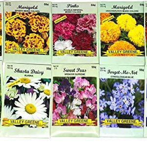 Set of 50 Flower Seed Packets! Flower Seeds in Bulk, 15 or More Varieties Available!