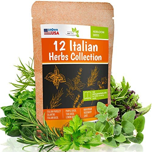 12 Italian Herb Seeds Pack - Heirloom and Non GMO, Grown in USA - Indoor or Outdoor Garden - Four Basil Varieties and Parsley, Cilantro, Rosemary, Thyme, Oregano, Marjoram, Sage, Arugula