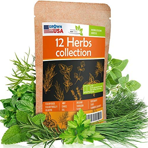 12 Culinary Herb Seeds Pack - Heirloom and Non GMO, Grown in USA - Indoor or Outdoor Garden - Basil, Parsley, Dill, Cilantro, Rosemary, Mint, Thyme, Oregano, Tarragon, Chives, Sage & More