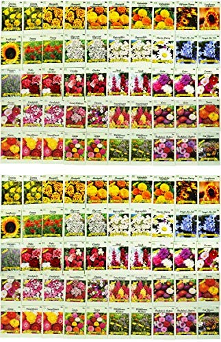 Set of 100 Assorted Valley Green Flower Seed Packets! Flower Seeds in Bulk - 29+ Varieties Included