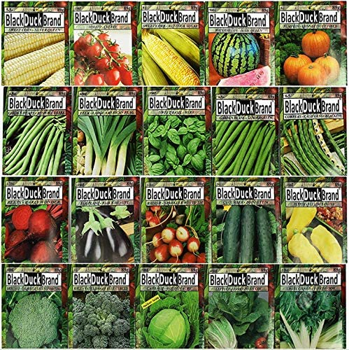 Set of 20 of Our Favorite Premium Variety 2020 Vegetable Seeds Dated for 2020 - PREVIUOS Years Seeds