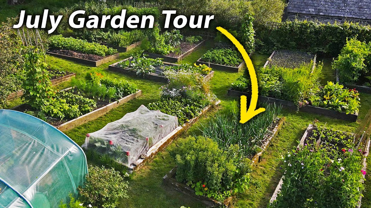 Vegetable Garden Tour | July in our Organic and Permaculture Inspired No Dig Vegetable Garden