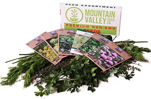 Culinary Herb Seeds Garden Collection | Basic Assortment | 6 Non-GMO Seed Packets: Basil, Dill, Oregano, Parsley, Chives & Mustard | Grow Cooking Herbs & Spices