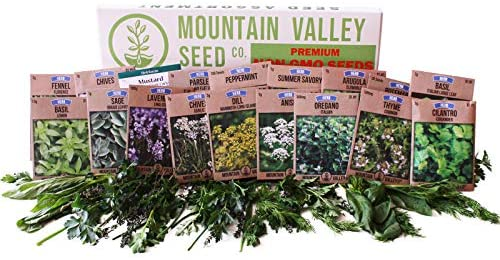 Culinary Herb Seeds Garden Collection | Premium Assortment | 18 Non-GMO Seed Packets: Savory, Mint, Anise, Fennel, Cilantro, Sage, Rosemary, Thyme, Arugula, & More