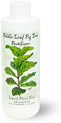 Fiddle Leaf Fig Tree Fertilizer | Ficus Plant Food | Improves Leaves and Branches | Potted Indoor Trees and House Plants Treatment by Aquatic Arts