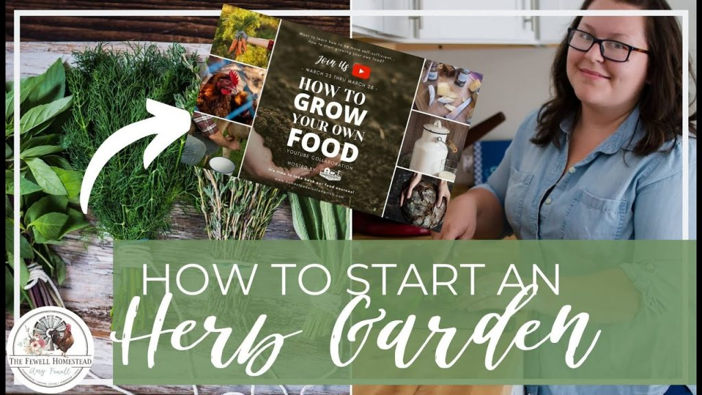 How to Start an Herb Garden | Grow Your Own Food Series