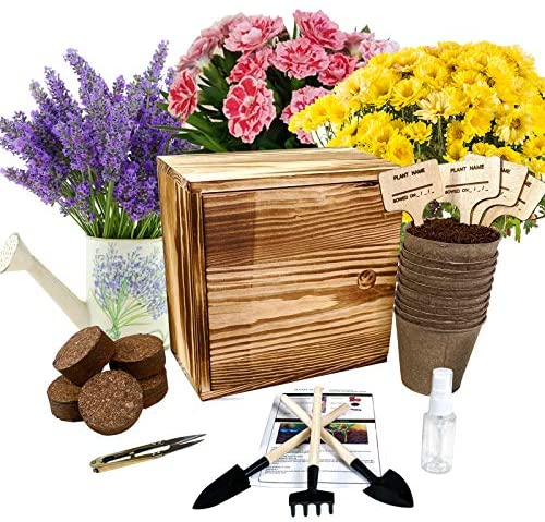 Hand-Mart 4 Flower Seeds Starter Complete Kit Indoors Chrysanthemum Mint Lavender Carnation, Including Soil, Pots, Tools, Pruner, Sprayer, Plant Labels, Wood Box, DIY Craft Gift for Kids Adults.