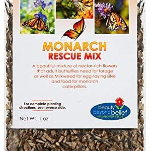 Monarch Butterfly Rescue Wildflower Seeds Bulk Open-Pollinated Wildflower Seed Packet, No Fillers, Annual, Perennial Milkweed Seeds for Monarch Butterfly 1oz
