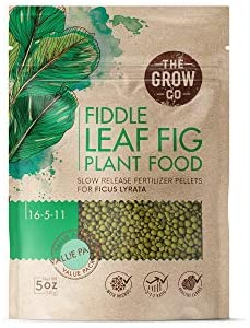 Fiddle Leaf Fig Tree Plant Food - Slow Release Fertilizer Pellets for Potted Figs - Steady Nutrients to Grow Healthy Indoor and Outdoor Ficus Plants (5 oz)