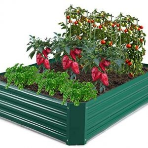 GROWNEER 4 x 3 x 1 Feet Green Metal Raised Garden Bed with 4 Pcs Garden Stakes, 1 Pair of Gloves and 15 Pcs Plant Labels, Elevated Planter Box for Vegetables, Fruits, Flowers, Herbs