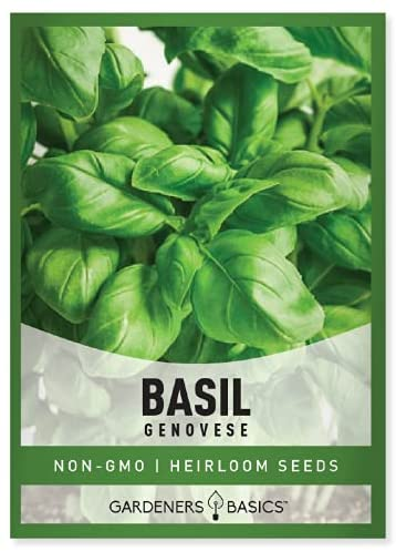 Genovese Basil Seeds for Planting Heirloom Non-GMO Herb Plant Seeds for Home Herb Garden Makes a Great Gift for Gardening by Gardeners Basics