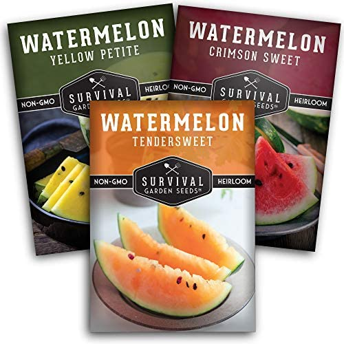 Survival Garden Seeds Tri-Color Watermelon Collection Seed Vault - Non-GMO Heirloom Seeds for Planting Vegetables - Yellow, Red, and Orange Watermelons