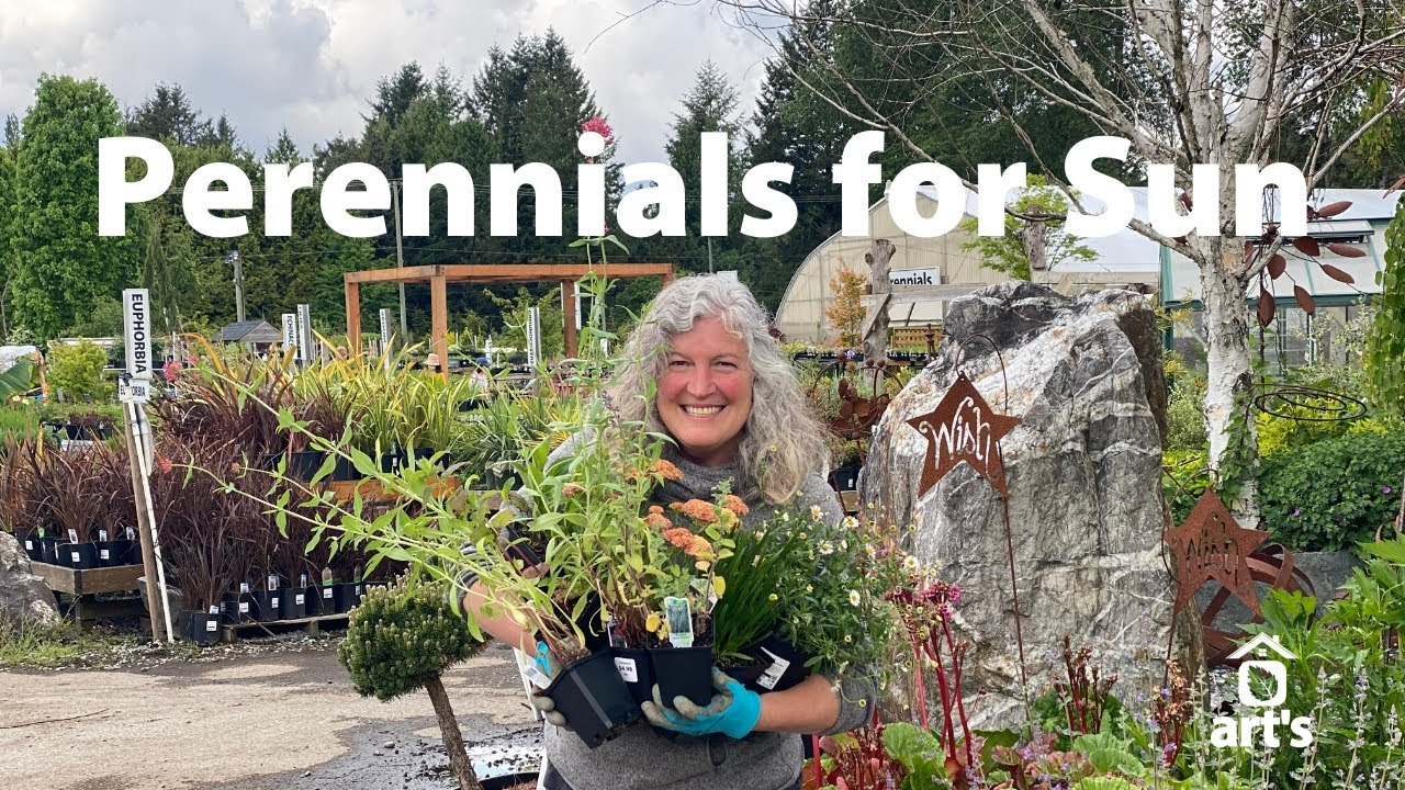 Perennials for Sunny Areas that Attract Pollinators