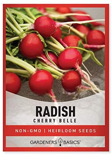Radish Seeds for Planting - Cherry Belle Variety Heirloom, Non-GMO Vegetable Seed - 2 Grams of Seeds Great for Outdoor Spring, Winter and Fall Gardening by Gardeners Basics