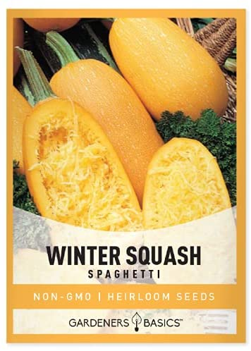 Spaghetti Squash Seeds for Planting - Winter Squash Heirloom, Non-GMO Vegetable Squash Variety- 3 Grams Seeds Great for Summer Garden by Gardeners Basics