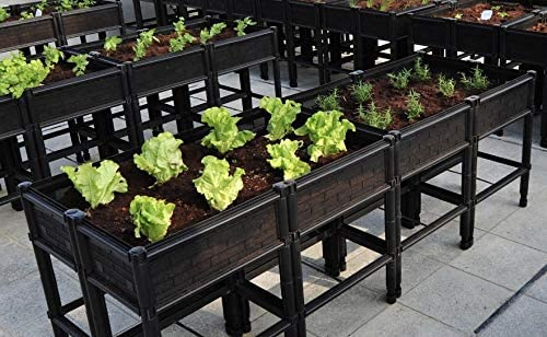 """City Farmer USA Raised Garden Bed with Elevated 7"""" Depth Planter Box for Container Gardening"""