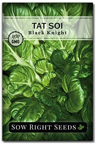 Sow Right Seeds - Black Knight Tat SOI Seed for Planting - Non-GMO Heirloom Packet with Instructions to Plant a Home Vegetable Garden
