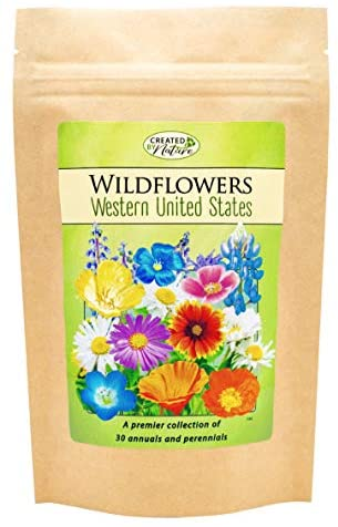 Western United States Wildflower Seed Mix - Over 54,000 Premium Seeds - by 'createdbynature'