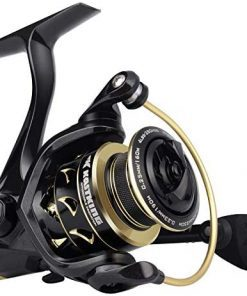 KastKing Valiant Eagle Gold Spinning Reel - 6.2:1 High-Speed Gear Ratio, Freshwater and Saltwater Fishing Reel, Faster Line Retrieve, Braid Ready Spool, 7+1 Shielded Stainless Steel Ball Bearings